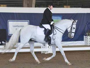 Eleanor Brimmer and Vadico Interagro at the 2011 Dressage Affaire CPEDI3*