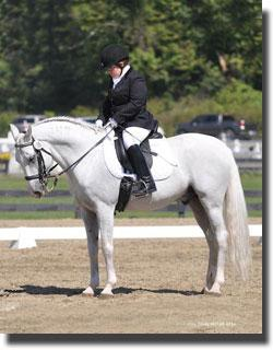 Eleanor Brimmer and Vadico Interagro at 2011 NEDA Fall Festival of Dressage CPEDI3* (Photo © Lindsay Yosay McCall for the USPEA)