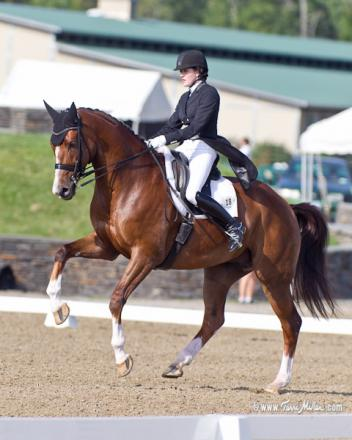Brittany Frazier and All In her eight-year-old Dutch Warmblood won the Prix St. Georges with a score of 73.509 percent and the Intermediate I with a score of 72.632. Photo: TerriMiller.com