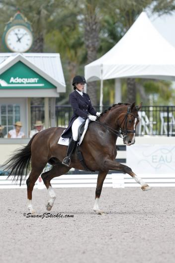 Nation's Cup Team Bronze medalist, Brittany Fraser and All In competing at the 2013 Adequan Global Dressage Festival. (Photo: SusanJStickle.com)