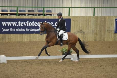 Anders Dahl and Serano Gold-son Cashmir were the impressive winners of last year's five-year-old Pavo Cup pre-selection at Hartpury (Photo: courtesy of KWPN)