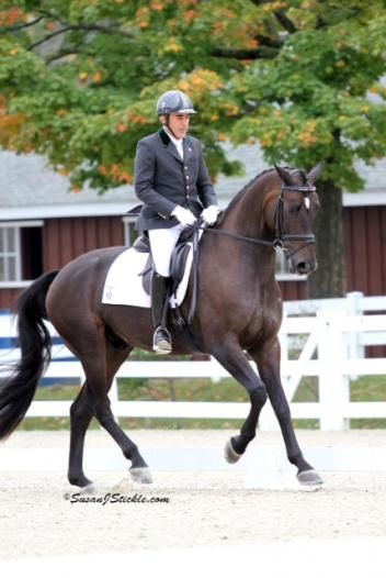 Dr. Cesar Parra and Simply Nymphenburg won the Five-Year-Old division of the FEI Young Horse Finals at Dressage at Devon with an impressive 80.60%. (Photo: SusanJStickle.com)