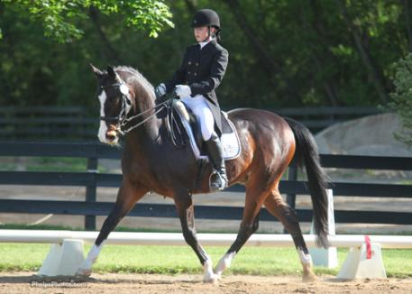 Nicole Chiappetti riding Pip an 18-year-old Hanoverian by Pik Solo owned by her trainer Amanda Johnson Win the Mary Phelps/Markel High Point Award for Young Rider at Silverwood Dressage.photo: Mary Phelps - phelpsphoto.com