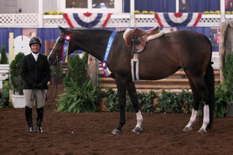 Chris Steer and Tivoli won the Grand Adult Amateur Hunter Championship at the 67th Buffalo International Horse Show. Photo By: Kendall Bierer/Phelps Media Group.