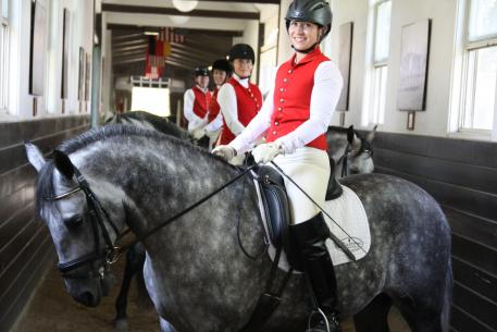Custom Saddlery is proud to announce they are now the official saddle of the famed Tempel Lipizzans of Mill Creek, Illinois. (Photo: courtesy of Tempel Lipizzans)