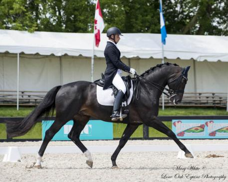David Marcus and Chrevi's Capital won the Grand Prix and the Grand Prix Freestyle at the CDI3* Angelstone International Dressage Tournament in Rockwood, ON.(Photo: Mary White, Lone Oak Equine Photography)