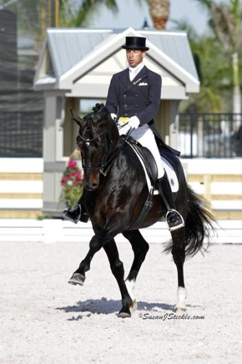 """David Marcus riding Chrevi's Capital won the Grand Prix and Grand Prix Special at the CDI3* Canada Classic held May 18-20 in Burlington, Ontario.""