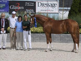 Bron in the USA Winner and Stallion Champion De Feiner Star. Photo Hoof Print Images