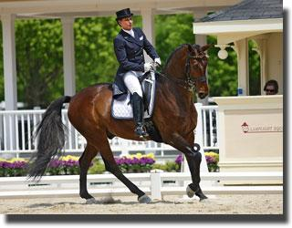 GP Delano and Yvonne Barteau currently ranked #1 in the Developing Horse Championships. Owned by Ginna Franz owner of Grand Prix Equestrain.photo credit: Violetta Jackowski Fire and Earth Photography