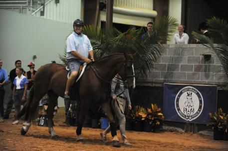 "Parent Lead Line - ""Most embarrassing to their family and barn""- Don Stewart. Photo by Randi Muster"