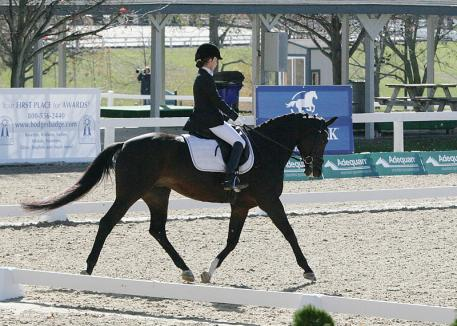Cecilia Cox riding Donabella at the 2013 US Dressage Finals Photo: DressageDaily