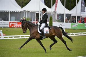 Doug Payne and Crown Talisman in the dressage at the 2014 Saumur CCI3* (Eric Knoll)