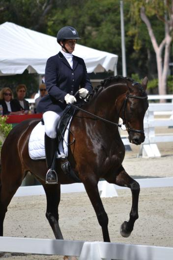 """Regalo"" (Rosario x Dandielle by Nandino) improved upon the first day with rider Lientje Schueller to score an 8.20 in the Final Test (8.17 combined score) and move into the lead to claim the Five-Year-Old Markel/USEF Western Dressage Selection Trial at the Dressage at Flintridge CDI*/Y/J.  for owner Pinky Roberts 