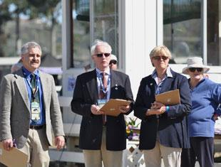 (L to R) FEI Veterinarian Dr. Mike Tomlinson, Techincal Delegate Ulf Wilkin (SWE), Judge Kathy Amos-Jacob (FRA) , and Apprentice Steward Maureen VsnTuyl evaluating each participant at the 2011 Dressage Affaire