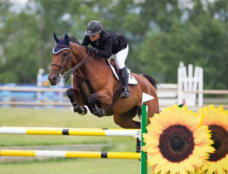 Ellicia Edgar of Valleyfield Farm competes herself in the International ranks of the sport!