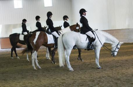 The Equitation phase