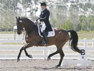 Todd Flettrich rode Cherry Knoll Farm's Otto to third place finishes in the Wellington Spring Classic Dressage Challenge's FEI Grand Prix de Dressage and Grand Prix Special. Photo © 2010 Lauren Fisher.