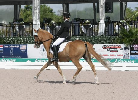 Katrina Sadis and Poldy 10 at the 2014 Florida International Youth Dressage Championships  Photo: Betsy LaBelle