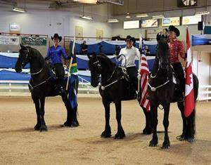Friesians Carrying Team Flags (Rachel Kelley)