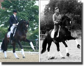 Alizee Froment training with double bridle and with head-collar