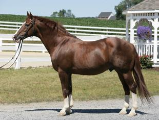 Gold Luck at 19-years-old (Photo: Courtesy Rolling Stone Farm)