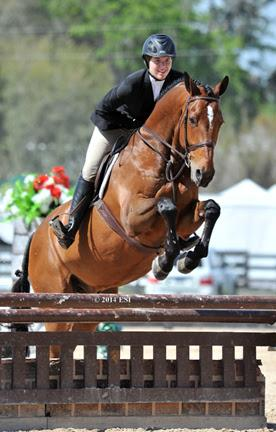 Haleigh Landrigan and Acovibu on course in the ,000 Platinum Performance Hunter Prix at HITS Ocala. ©ESI Photography