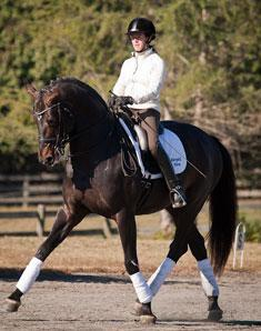 Jennifer Baumert and Marydell Farm's Hanoverian Stallion Don Principe (1999 by Donnerhall out of SPS daughter of Prince Thatch xx) schooling at the training location for Cloverlea Farm at Cross Creek Farm in Columbus, North Carolina. Credit: Pat Girard Photography
