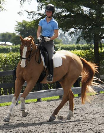 Hannah Corjulo and Essex works on exercises to prepare for the Junior(Young Rider) level with Lendon Gray  Photo by Betsy LaBelle