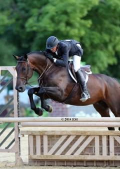 Harold Chopping and Caramo pocketed another $5,000 Devoucoux Hunter Prix win on Sunday at HITS Culpeper. ©ESI Photography