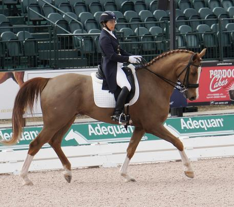 Heather Mason and Zar wins the Intermediate I at the 2014 Adequan Global dressage Festival Photo: Betsy LaBelle
