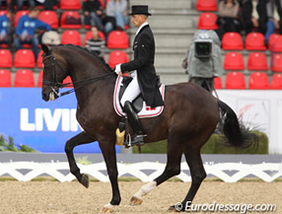 Andreas Helgstrand and Akeem Foldager executing the second piaffe in the Grand Prix test at the 2013 European Dressage Championships (Photo © Astrid Appels)