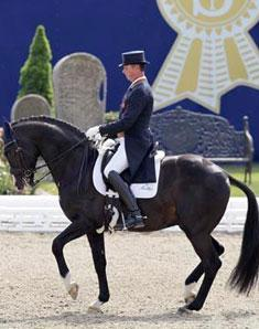 Carl Hester and the Metall sired stallion Uthopia