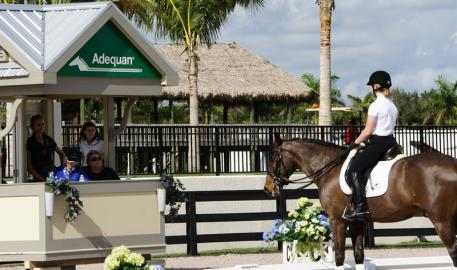 Anne Gribbons coaches at the 2013 Robert Dover Horsemastership week Photo: DressageDaily