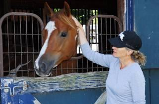 Cari Swanson and RJ - The horse that brought them together.