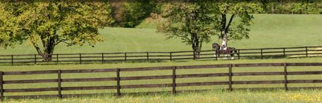 First Choice Farm has rolling acres on which to train, a beautiful outdoor arena and lovely indoor.  Photo: Mary McKenna