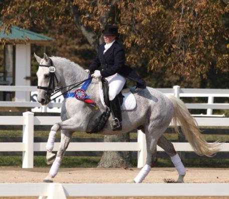 "Korin Rinaldo on Forrest Hill Farm bred ""Forest""(By Cottonwood Flame) Image: Photo: Jennifer Kaiser"