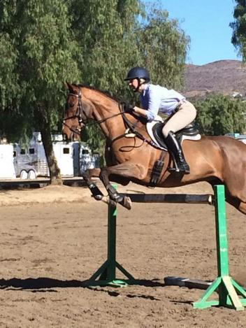 Avery Klunick goes through a jumping exercise with In It to Win It (USEF Archive)