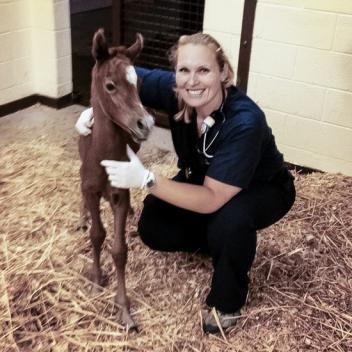 Amanda Compton with a patient at the Equine Medical Center (Photo Courtesy of Amanda Compton)