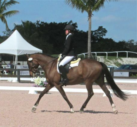 Elle Woolley competes in her first FEI Para test Grade III aboard her P. Sparrow Socks.