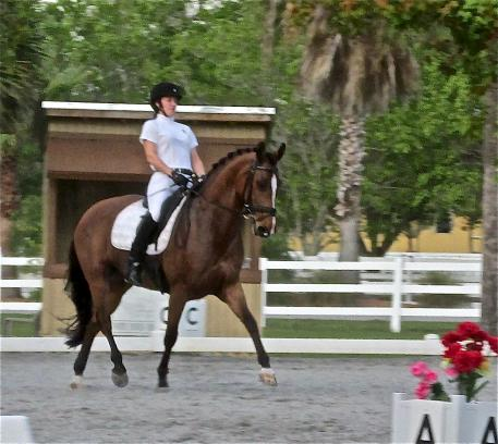 Rebecca Hart on Schroeters Romani rides to 77.57% at Welcome Back to White Fences Show.