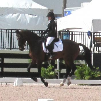 Angela Peavy aboard Lancelot Warrior at Adequan Global Dressage Festival.