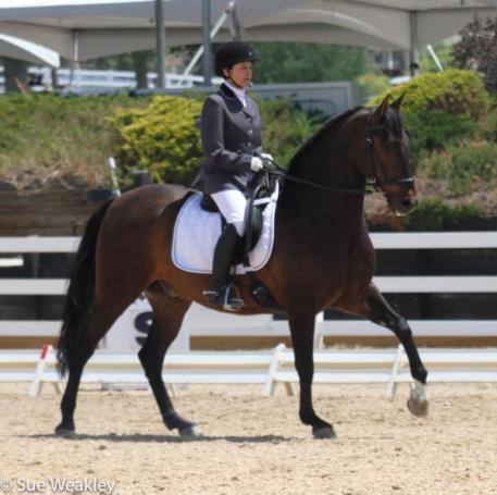 Jane Ann Lake and Tecolate in the USDF Freestyle Test of Choice