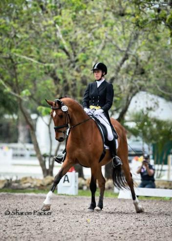 Jennifer Marchand riding Tokyo, 13 yr old, showing Intermediare II, owned by Renee Isler Photo: www.sharonpacker.com