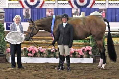 Jennifer Alfano and Maggie May captured the First Year Green Working Hunter Championship at the 67th Buffalo International Horse Show. Not only did the pair win the division's championship, but they were also awarded the Grand Hunter Championship for their efforts throughout the professional division. Kendall Bierer/Phelps Media Group.