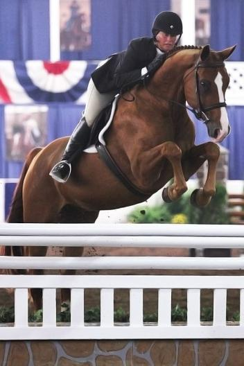 Jennifer Alfano and Jersey Boy took led the Working Hunter division sweeping the over fences for the opening day of the 67th Buffalo International Horse Show. Photo By: Kendall Bierer/Phelps Media Group.