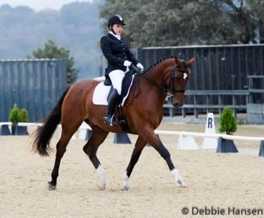 Jennifer Shearer and Arento are off to a great start with their partnership Photo: Debbie Hansen