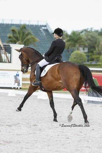 Judy Sloan and Donna Classica – Grand Prix mare age 14 by Donnerhall  Photo: SusanJStickle