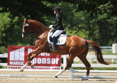 Jane Karol (Concord, MA) and her own Sunshine Tour (Sir Donnerhall x History/Alabaster)