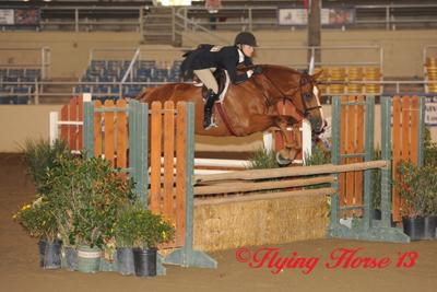 For the second year in a row, Katie Gardner wins the ,000 USHJA National Hunter Derby Photo: Flying Horse Photography