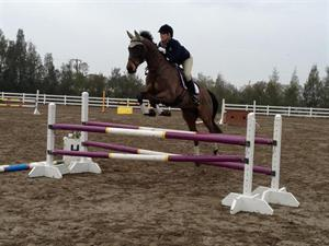 Katy Groesbeck and Oz the Tin Man at the California winter training session (USEF Archives)